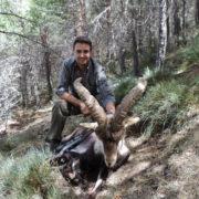 Cazar ibex Sierra Nevada
